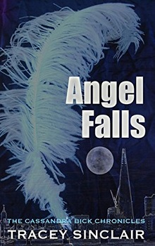 Angel Falls by Tracey Sinclair