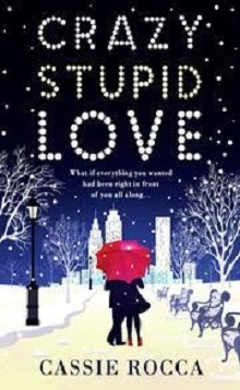 Crazy Stupid Love by Cassie Rocca