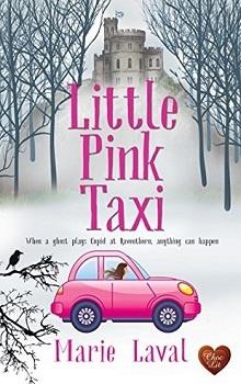 Little Pink Taxi by Marie Laval